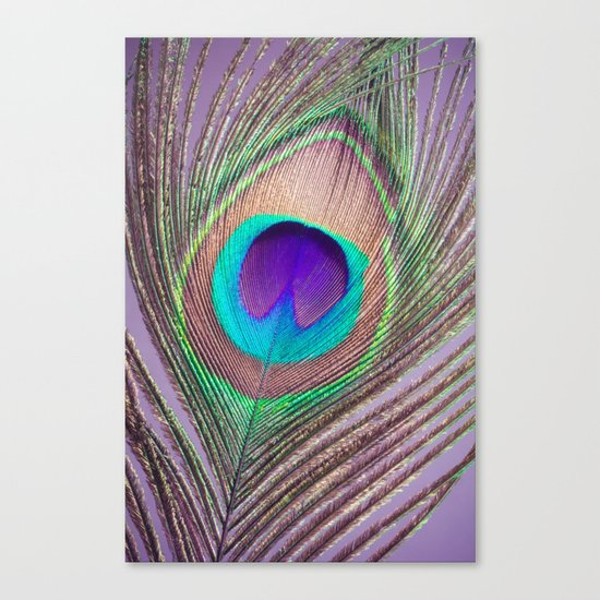 Pretty Plume Canvas Print