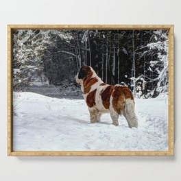 St Bernard in the snow Serving Tray