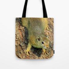 Cute little squirrel Tote Bag