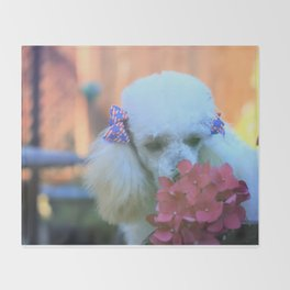 Toy Poodle in the garden Throw Blanket