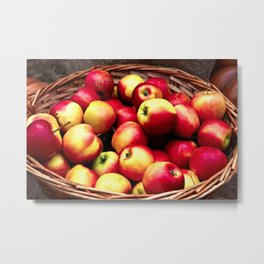 Fresh Apples In A Wicker Basket. Pumpkins And Burlap Cloth In The Background Metal Print