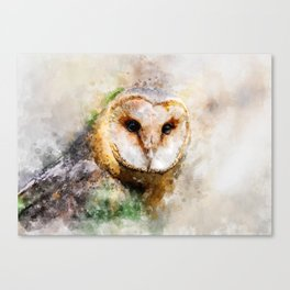 Watercolor Barn Owl Canvas Print