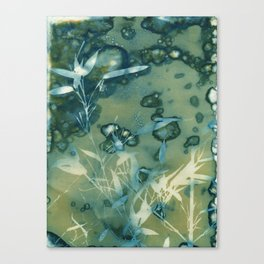 Bamboo Bubbles Cyanotype Canvas Print