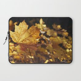 Leaf in autunm Laptop Sleeve