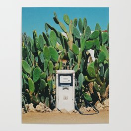 Cactus IV Poster