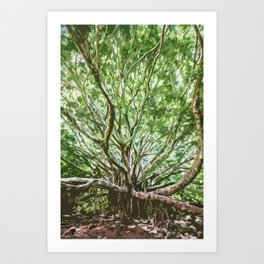 Banyan Tree Choas - Photoart Art Print