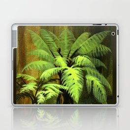 Tree Ferns Darwin Laptop & iPad Skin