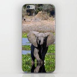 Elephants in the water - Africa wildlife iPhone Skin