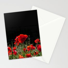 Red Poppies in bright sunlight Stationery Cards