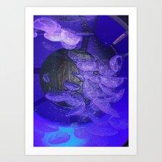 Acrylic Jelly Fish Art Print