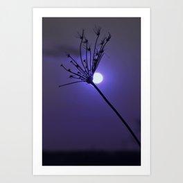 Silhouette On Blue Art Print