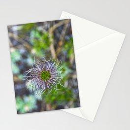 Prairie smoke wildflower Stationery Cards