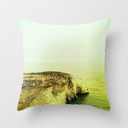 Shell Beach Throw Pillow