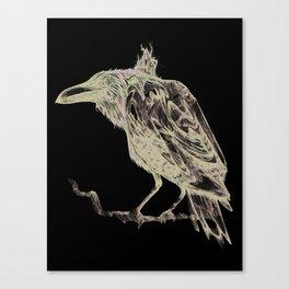 cuervo Canvas Print