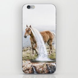 Waterfall Horse iPhone Skin