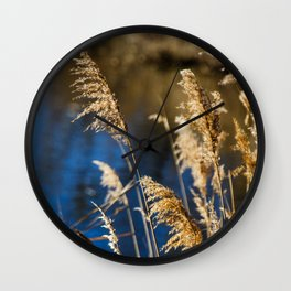 Reeds in Camargue Wall Clock