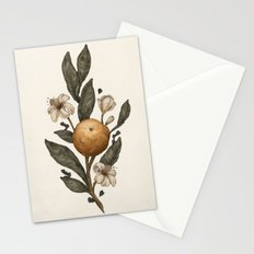 Clementine Stationery Cards