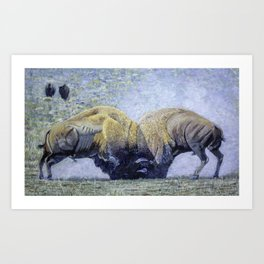 Bison Fight Original Oil Painting 60x36x1.5 Inch Art Print