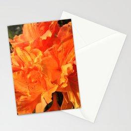Orange Azaleas Stationery Cards