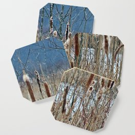 Cattail, Bulrush and Wetlands Coaster