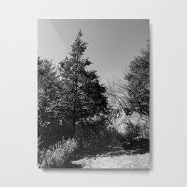 The Trees - Moody n' Grey Metal Print