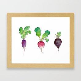 Radish Bunch Framed Art Print