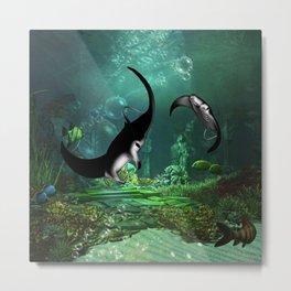 Wonderful manta rays in the deep ocean Metal Print