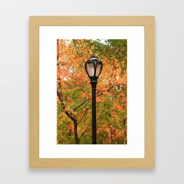 The Lampost Framed Art Print