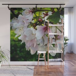 Cheery Cherry Blossoms Wall Mural