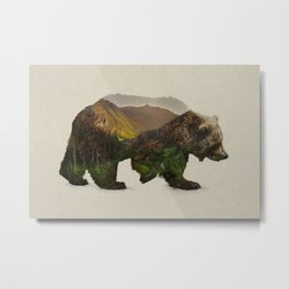 North American Brown Bear Metal Print