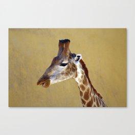 Giraffe Portrait Close up 1 Canvas Print