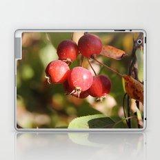 Splash of Red Laptop & iPad Skin