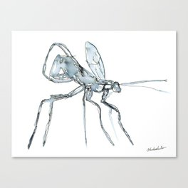 Mosquito, Watercolor Canvas Print
