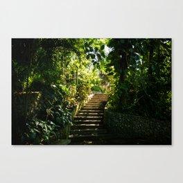 Garden - Rio - photo series Canvas Print