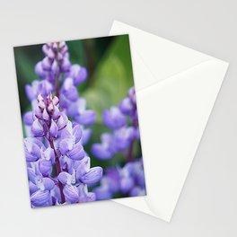 Wild lupine Stationery Cards
