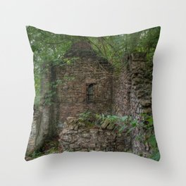 Derelict Cottage Throw Pillow