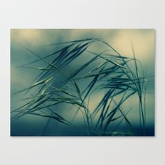 Magic wind Canvas Print