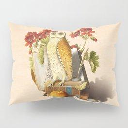 Apprentice Owl Pillow Sham