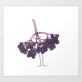 elderberries Art Print