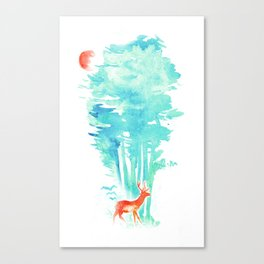 Summer in the Woods Canvas Print