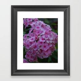 Love :) Framed Art Print