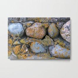 moss & stone Metal Print