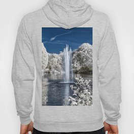 Fountain in Infrared Hoody