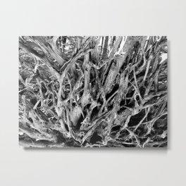 Brachial Metal Print