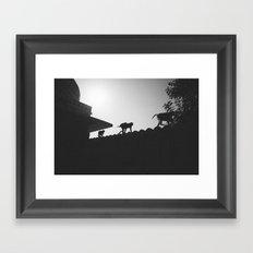 Monkeying Around Framed Art Print