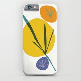zen garden color stones 3 iPhone Case