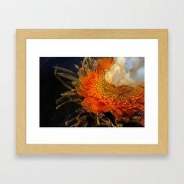 Flowering Tea Framed Art Print