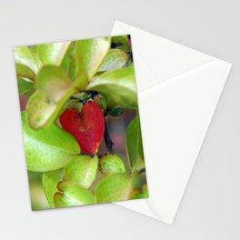 Heart-shaped Leaf Stationery Cards