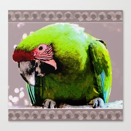 Endangered Great Green Macaw Canvas Print