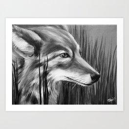 Coyote Mother Art Print